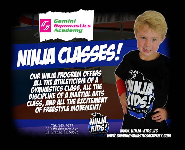 resized ninja