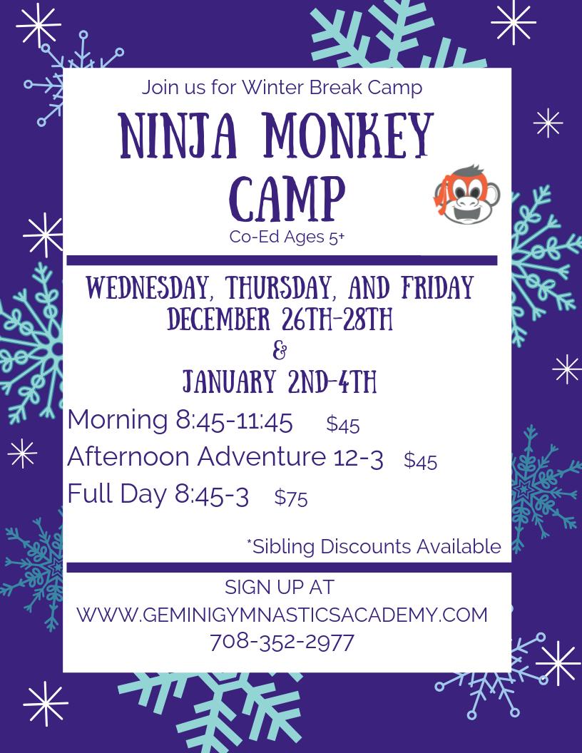 Ninja Monkey Camp