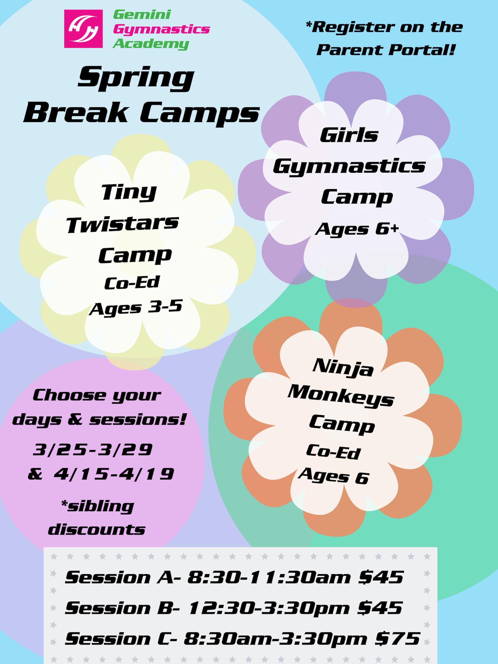 Spring Break Camp (1)
