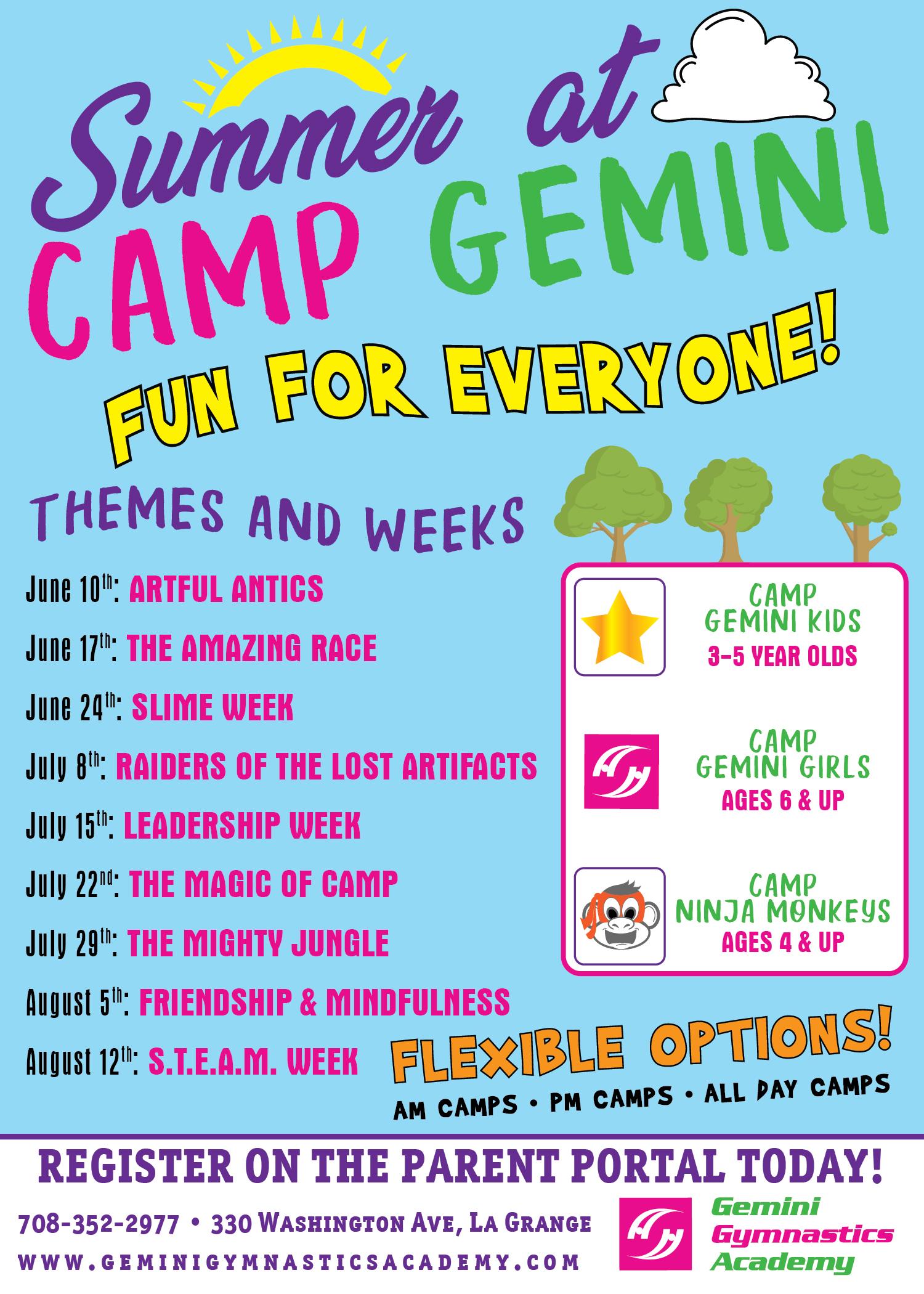 Gemini Gynmastics_Summer Camp 2019 Flyer-01 (1)