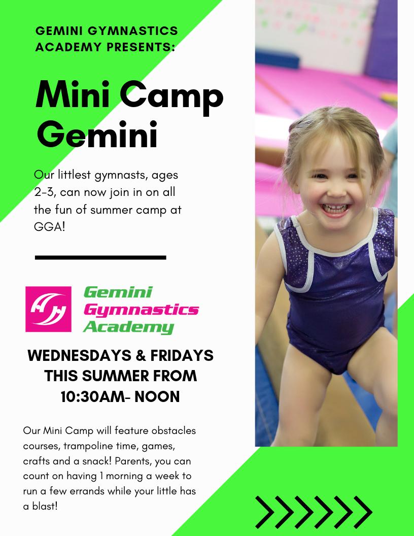 Mini Camp Gemini (2)