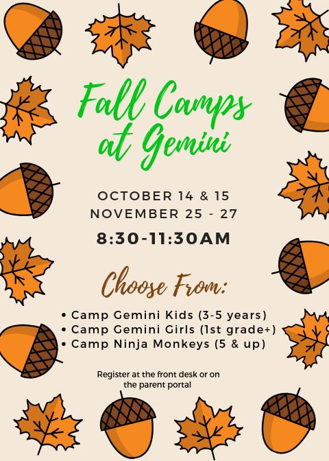 Fall Camps at Gemini (1)